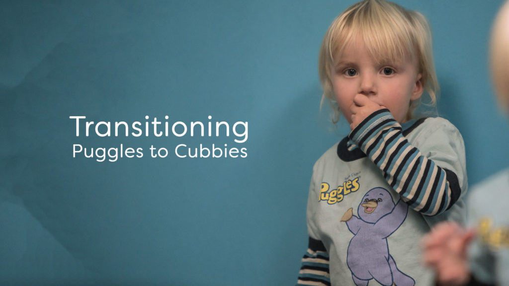 Transitioning Puggles to Cubbies