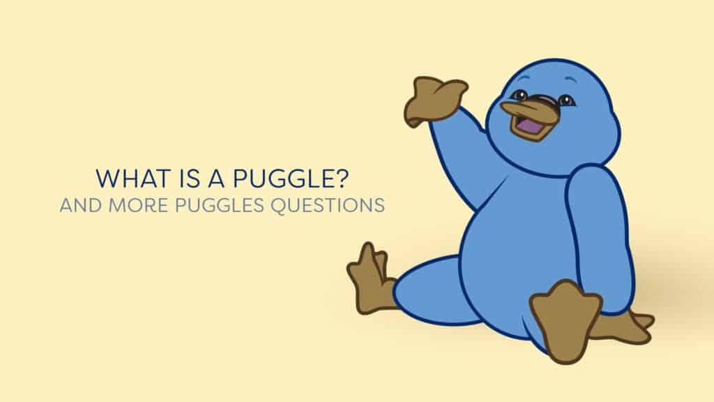 Puggles Questions